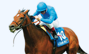 Gala Coral is one of Europe's largest and most respected betting houses