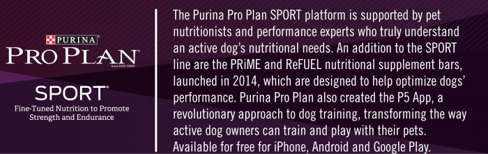 Fine-Tuned Nutrition To Promote Strength and Endurance