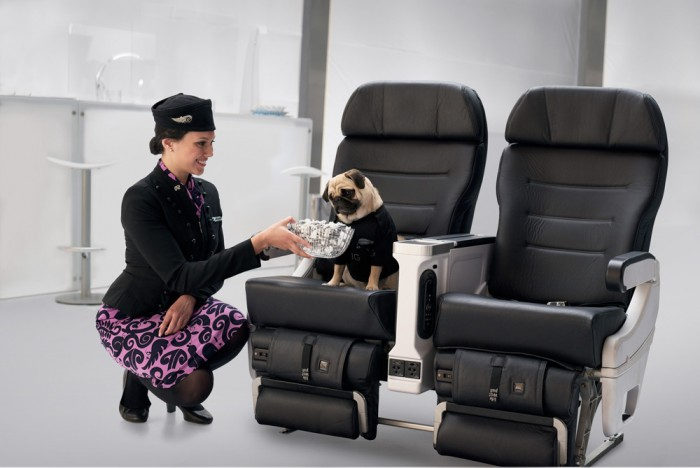 Men in Black Safety Defenders Star In Out Of This World Air New Zealand Safety Video.