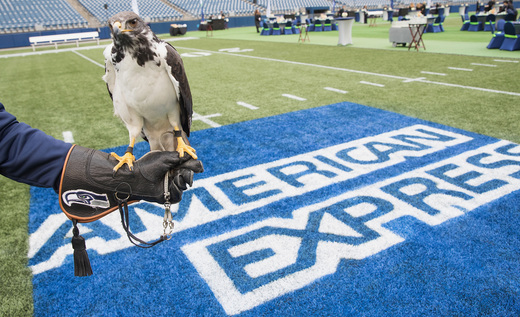 "American Express and the Seattle Seahawks hosted a ""Dinner on the 50,"" event for loyal fans at CenturyLink Field, Taima the Hawk image via Mat Heyward / Getty Images for American Express."